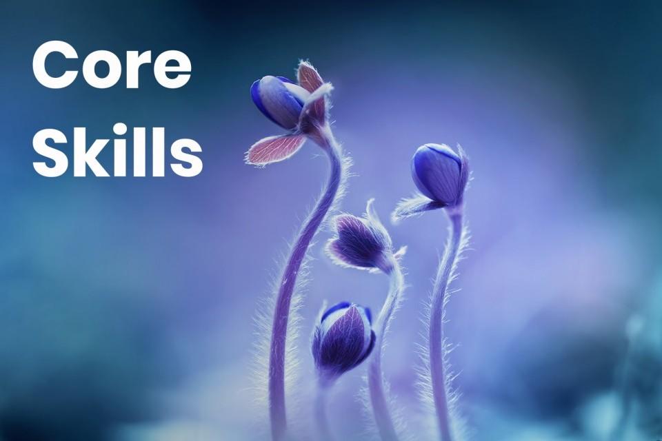 core-skills_1.jpg