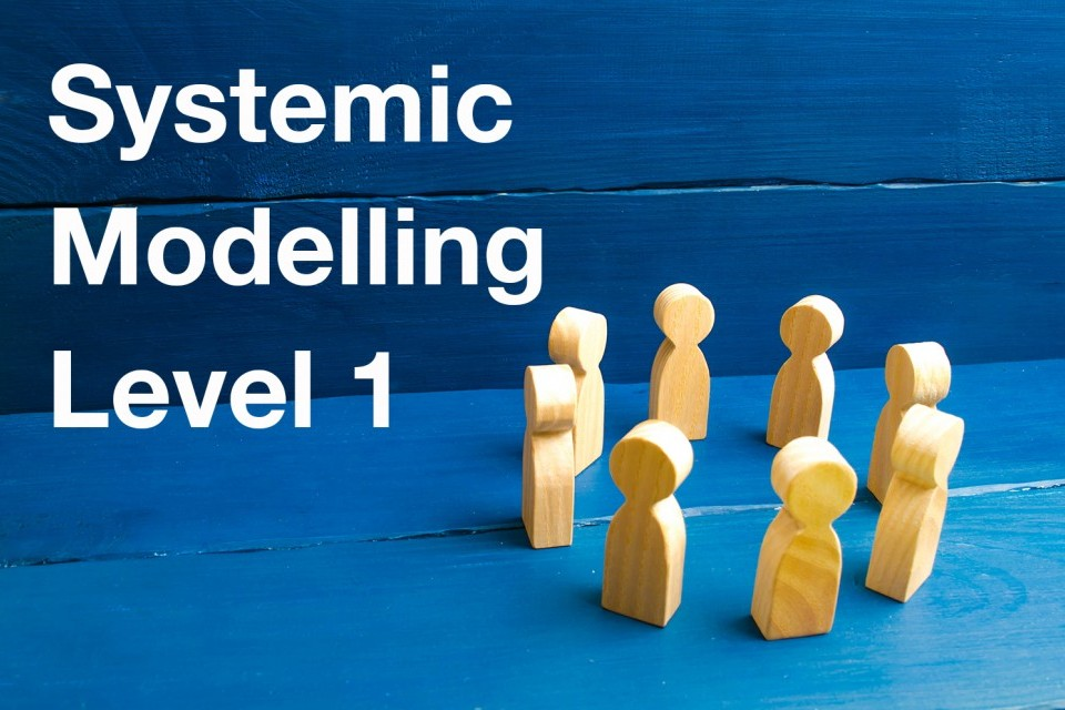 systemic-modelling-level-1.jpg