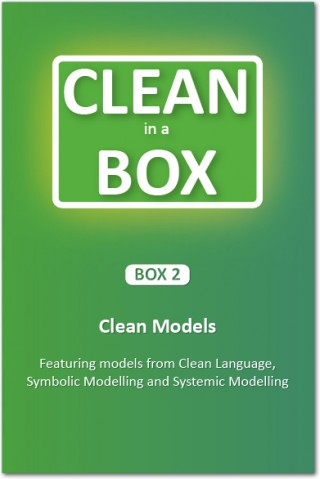 Clean-in-a-Box-2.jpg