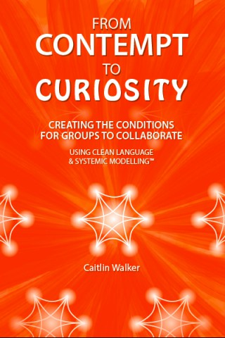 From_Contempt_to_Curiosity_-_Front_Cover.jpg
