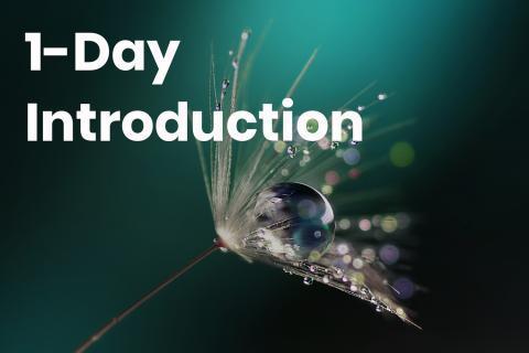 1-day-intro_1.jpg