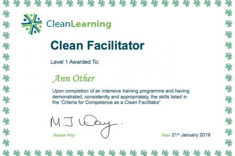 Facilitator_certificate.png