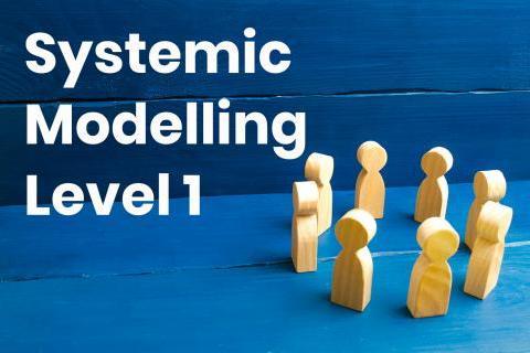 systemic-modelling-level-1_1.jpg