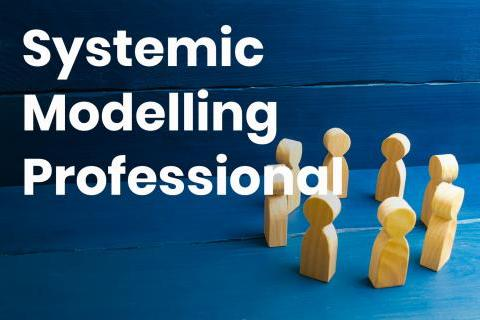 systemic-modelling-professional_copy.jpg