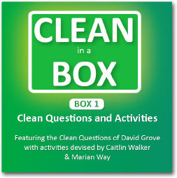 clean-in-a-box-1.jpg